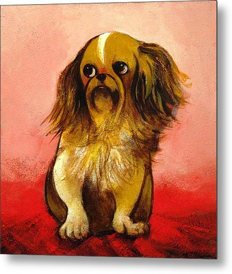 Pekinese Metal Print by Christine McGinnis