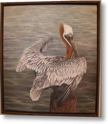 Pelican 3 Brown Metal Print by Judy Merrell
