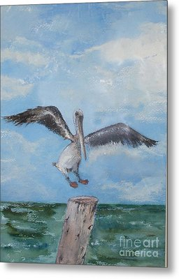 Metal Print featuring the painting Pelican by Sibby S