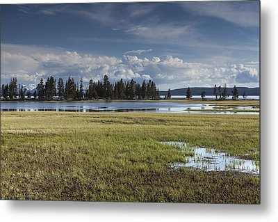Pelican Creek Metal Print