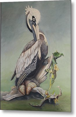 Pelican With Shells Metal Print by Joan Taylor-Sullivant