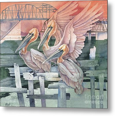 Pelicans At Audobon Island Metal Print