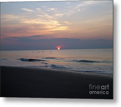 Pelicans At Sunrise On Tybee  Metal Print