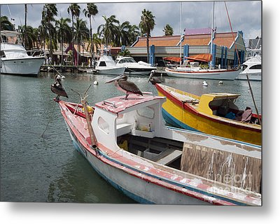 Pelicans On A Small Fishing Boat At Oranjestad Harbor, Aruba, Caribbean Islands Metal Print by Dani Prints and Images