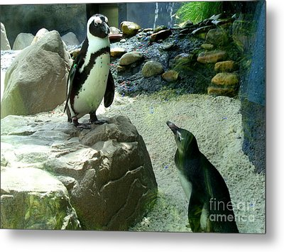 Penguin Friends Metal Print by Jeanne Forsythe