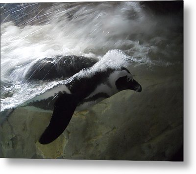 Penguin Metal Print by Maggy Marsh