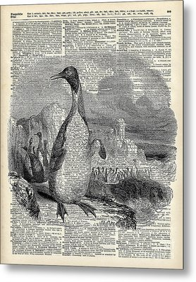 Penguin On Arctic Metal Print