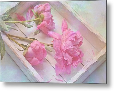 Metal Print featuring the photograph Peonies In White Box by Diane Alexander