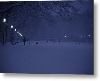 People Walk Their Dogs Metal Print by Stacy Gold