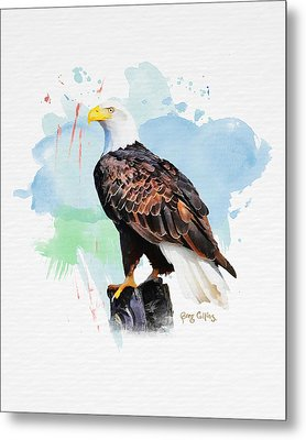 Metal Print featuring the painting Perched Eagle by Greg Collins