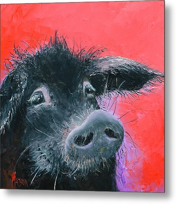 Percival The Black Pig Metal Print