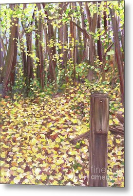 Percy Warner Trees Metal Print