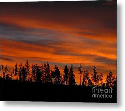 Perfect Evening Metal Print by Greg Patzer