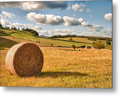 Perfect Harvest Landscape Metal Print