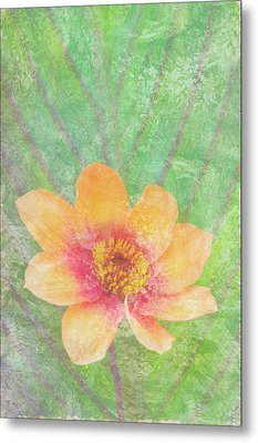 Perfect Peach Metal Print by JQ Licensing