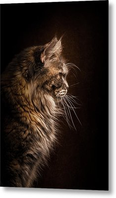 Perfect Profile Metal Print