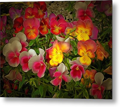 Radiance Pansies Metal Print