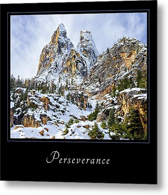 Metal Print featuring the photograph Perserverance 1 by Mary Jo Allen
