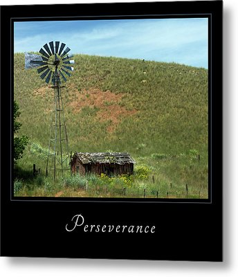 Metal Print featuring the photograph Perserverance 2 by Mary Jo Allen