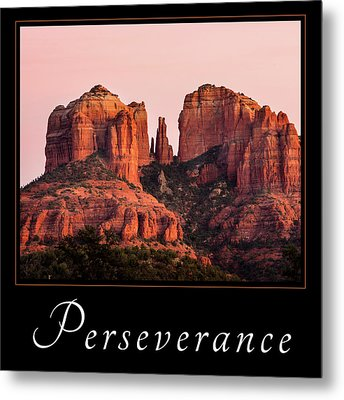 Metal Print featuring the photograph Perseverance by Mary Jo Allen