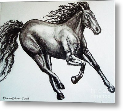 Metal Print featuring the drawing Persistance by Elizabeth Robinette Tyndall