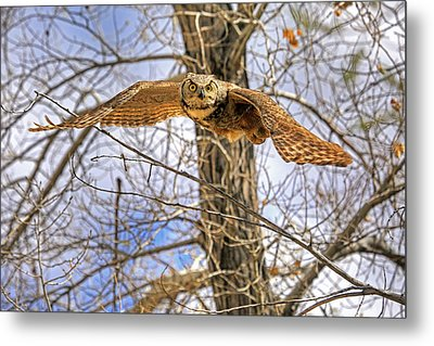 Perturbed Metal Print by Donna Kennedy