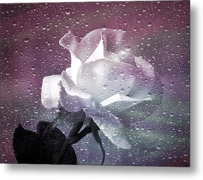 Petals And Drops Metal Print by Julie Palencia