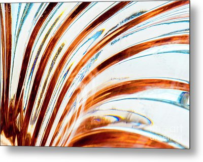 Metal Print featuring the photograph Petals Of Glass by Wendy Wilton