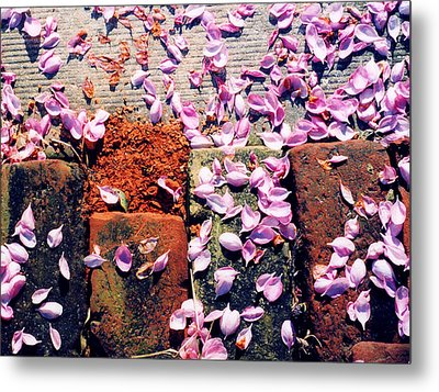 Metal Print featuring the photograph Petals On The Bricks 2 Ae by Lyle Crump