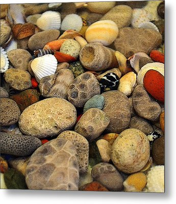 Petoskey Stones With Shells Ll Metal Print by Michelle Calkins