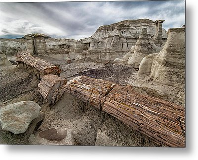 Metal Print featuring the photograph Petrified Remains by Alan Toepfer