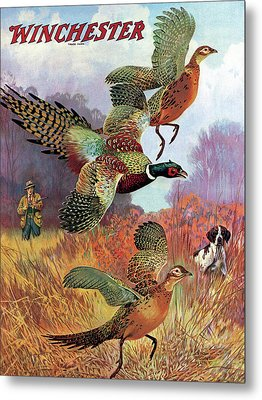 Pheasants On The Rise Metal Print by Lynn Bogue Hunt