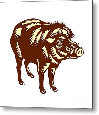 Philippine Warty Pig Woodcut Metal Print