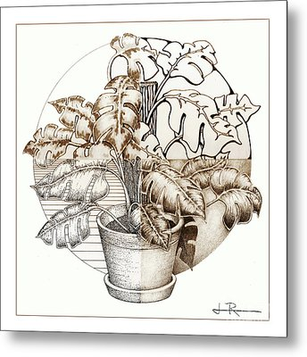 Philodendron 4 Metal Print