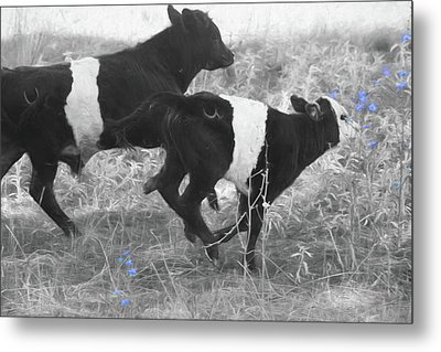 Photo Finish Metal Print by Donna Kennedy