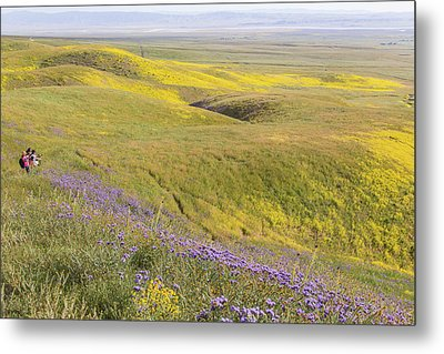 Metal Print featuring the photograph Photographing Carrizo by Marc Crumpler