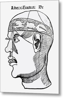 Phrenology Metal Print by French School