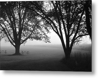 Picnic In The Fog Metal Print by Lauri Novak