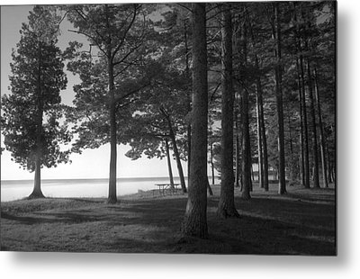 Picnic Table View-newport State Park Metal Print by Stephen Mack