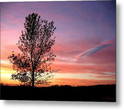 Metal Print featuring the photograph Picture Perfect Sunset 6014 by Maciek Froncisz