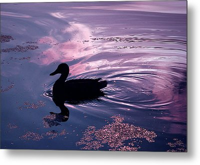 Picture Yourself... Metal Print by Arthur Miller