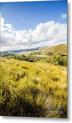 Picturesque Tasmanian Field Landscape Metal Print