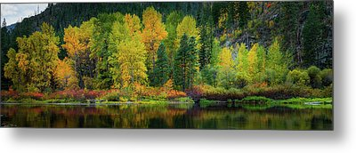 Metal Print featuring the photograph Picturesque Tumwater Canyon by Dan Mihai