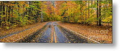 Pierce Stocking Drive In Fall Metal Print by Twenty Two North Photography