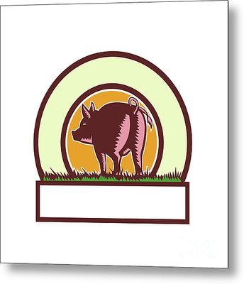 Pig Tail Rear Circle Woodcut Metal Print