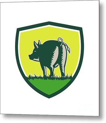 Pig Tail Rear Crest Woodcut Metal Print by Aloysius Patrimonio