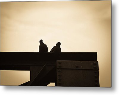 Pigeon And Steel Metal Print by Bob Orsillo