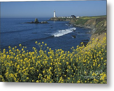 Pigeon Point Panorama Metal Print by Stan and Anne Foster