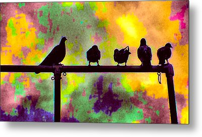 Pigeons In Abstract 2 Metal Print