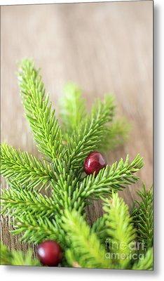 Pine Tree Needles Metal Print